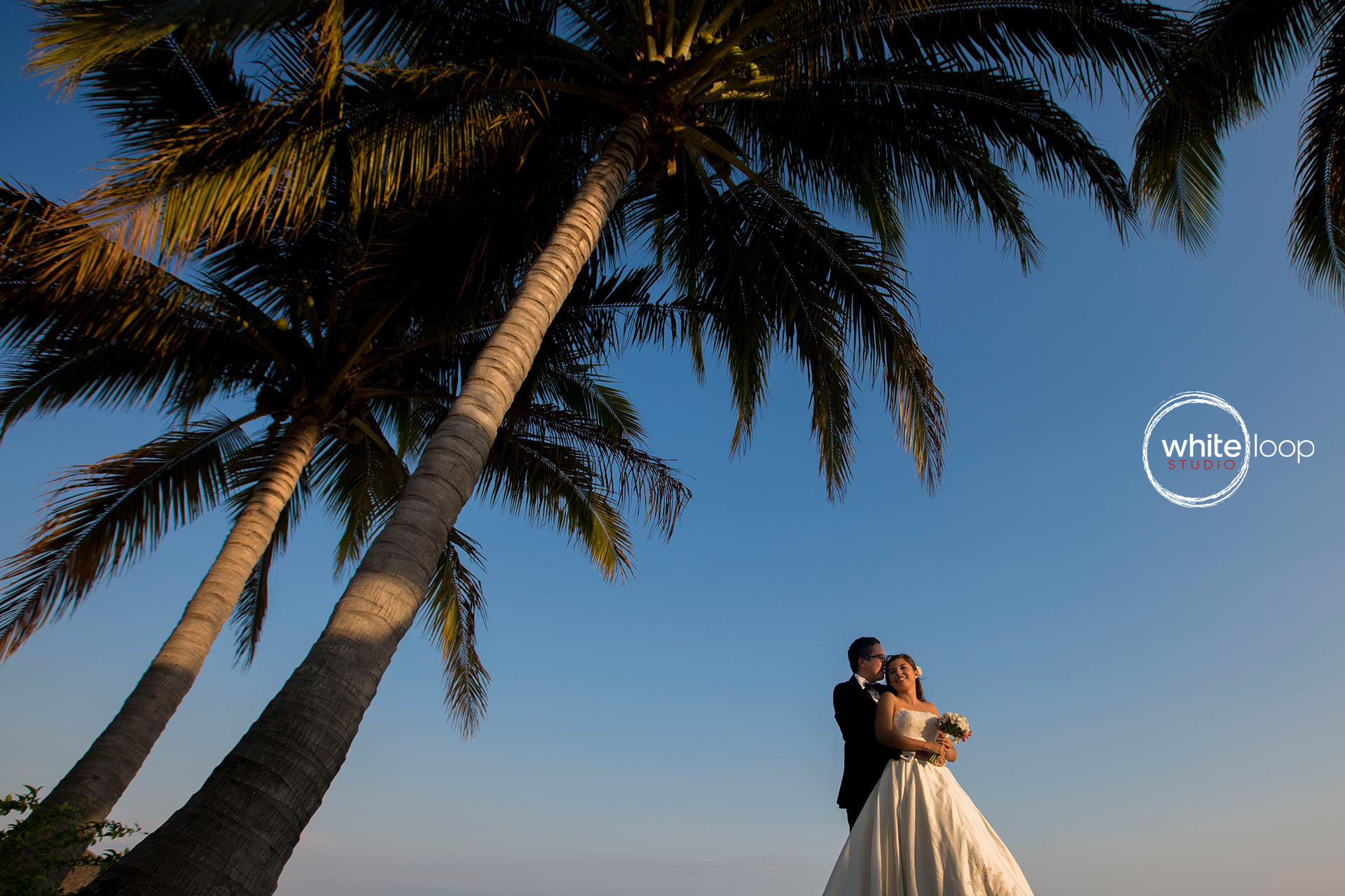bride and groom are standing under a big palm facing the suset in Puerto Vallarta
