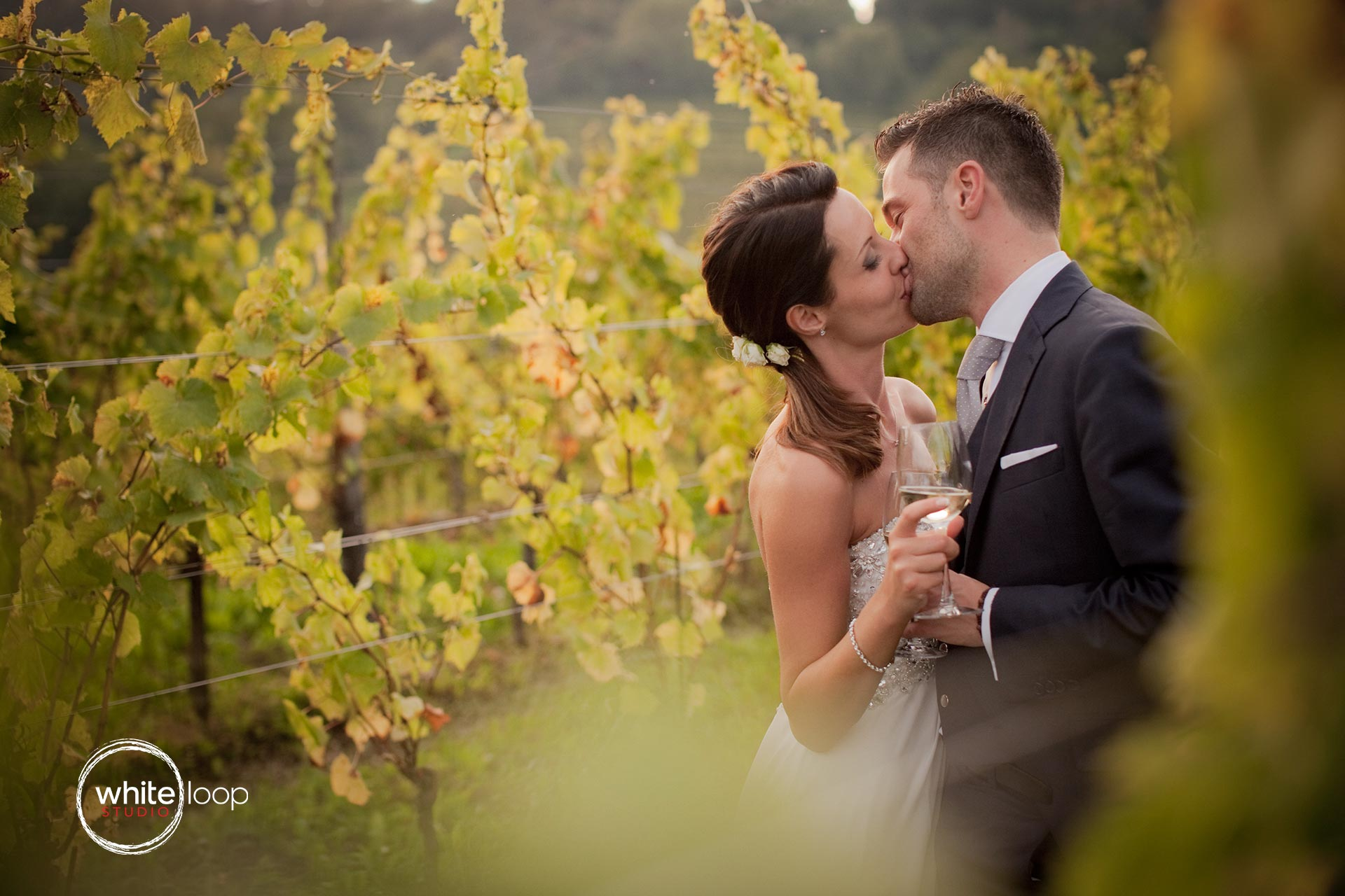 The bride and the groom are kissing through the grapes of a countryside field of Northern Italy.