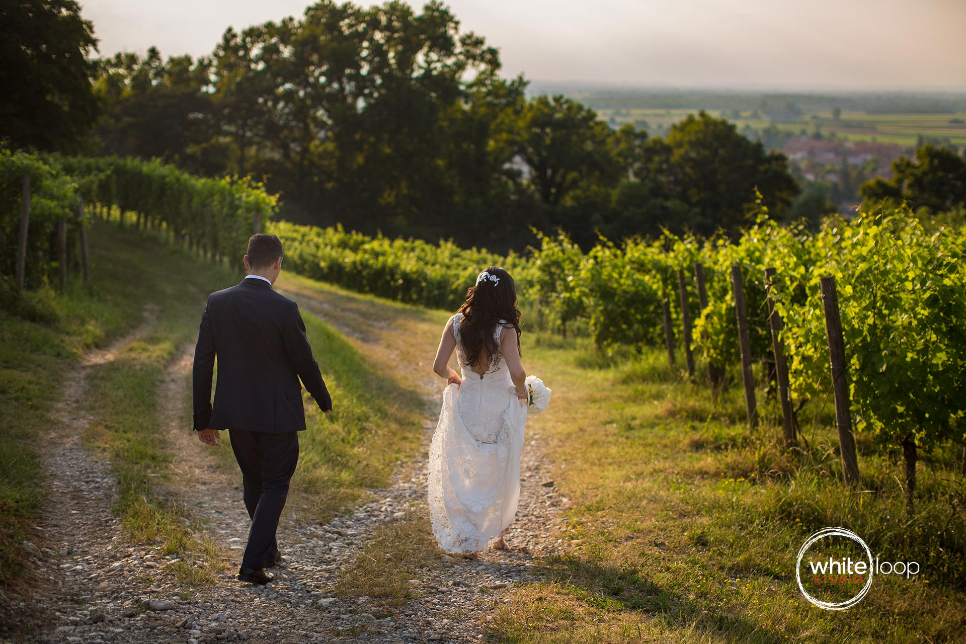 The bride and groom are walking through grapes fields, while the sunset is painting warm colours in the sky.
