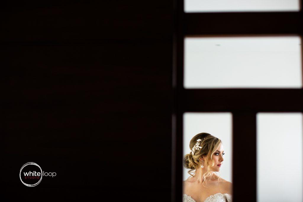 Dania and Mauricio, Wedding portrait, Culiacan, Mexico